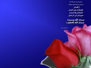 Mawar Indah